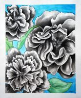UnColored Flowers by ShaylynnAnn