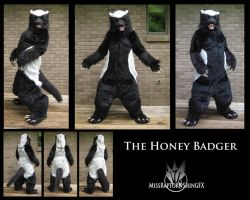 This...is the Honey Badger. by MissRaptor