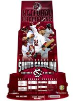 South Carolina Baseball Poster by BHoss1313