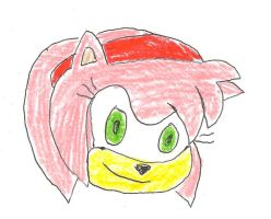 Amy Rose by dth1971