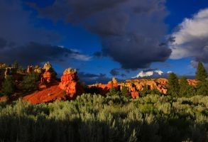Lower Red Canyon Evening by Caloxort