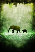 A Walk in the Rain by Izzie-Hill