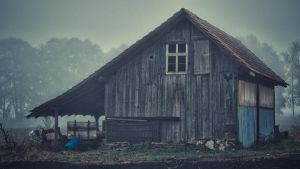 Old Hut by daenuprobst