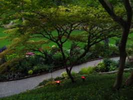 Butchart Gardens by Midnight664
