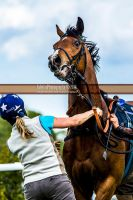 Horse Racing 454 by JullelinPhotography
