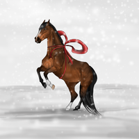 Merry Xmas goes to... by RvS-RiverineStables