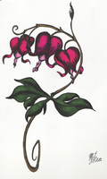 Bleeding Heart Flowers by Infamous-Mr-Oob