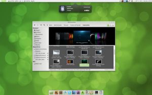 Linux Mint 10 - Coverflow by d14gvn