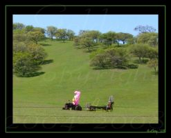 The Tractor Driver by Goldey
