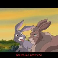 Funny Watership Down 20 by CrispinVCampion