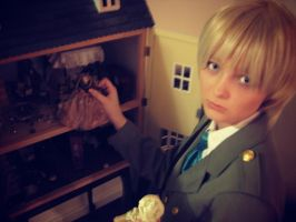 Hetalia: Iggy's little house by Alice-of--spades
