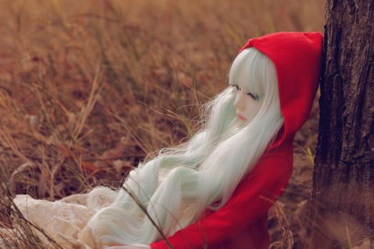 Red Riding Hood by Olifaciy