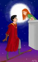 Harry Potter meets Aladdin by AgiVega