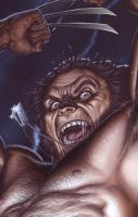 Wolverine - Detail by No-Sign-of-Sanity