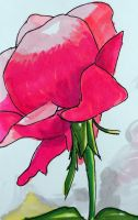 Pink Flor of March by SusArts
