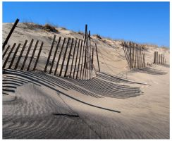 Shades by poipu