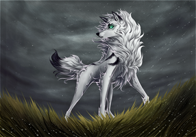 The Rising Storm by frostfoxie