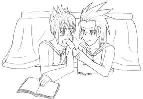 AkuRoku Day by AshAngel899