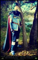Exiled - Prince Marth Cosplay by pikminlink