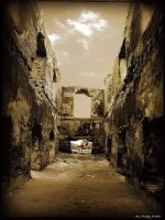 An Old Ruin... by ditya