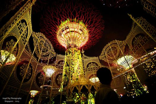 Gardens by the bay, Singapore. by angelng1231