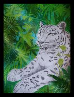 Snow leopard is dreaming about Jungle by Nojjesz