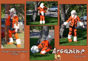 Arcanine Cosplay by Idess