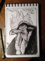 Artist Journal Sketch ~ Rooster! by MarkRHansen