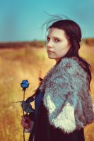 Lyanna Stark 6 (Game Of thrones) by Cireal