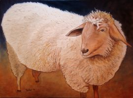 Shaggy Sheep by scott-plaster
