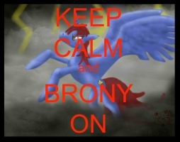 Keep Calm and do what Bronies do best. by ZeraMist