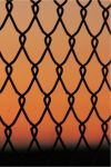 Chain Link  by pengirl389265