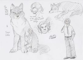 The wolf among us by SketchedStars