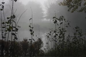 Misty Lake I by webworm