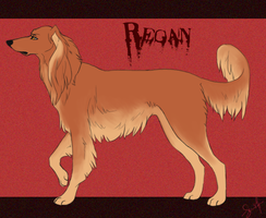 Regan by shelzie