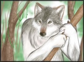 Wolf in the Woods by Twokinds