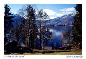 A View To The Fjord by bjoe