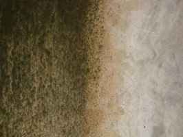 texture 1 by geyl