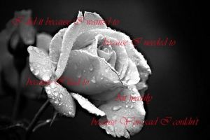 Rose Quote by Unelore