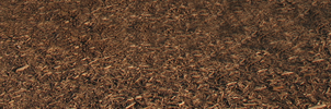 Mulch Texture 2 by WDWParksGal-Stock