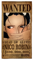 Robin Wanted Poster by PlanarShift