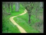 Wandering Path by cdaile