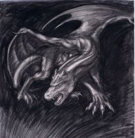 Charcoal Dragon by Jianre-M