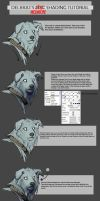 Shading tutorial by Delkkat