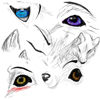 Wolf and Eyes by Mara-Elle