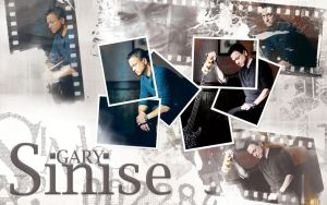 Gary Sinise - Photo by WATelse
