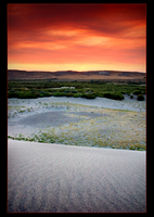 Bruneau Dunes by narmansk8