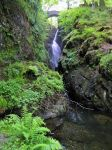 Aira force by cannibalmoth