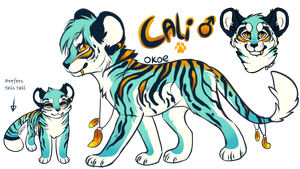 Cali Reference by Okoe