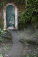 Forest Door by lucreziac